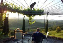 Camino-Uitzicht-Terrasje-Vijver-Pergola-Druiven