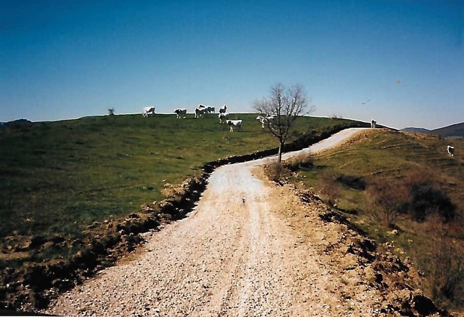 De net aangelegde onverharde weg naar Polmone