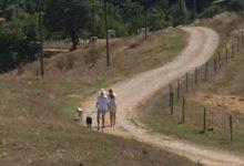 Roos-Nico-wandelen-onverharde weg-honden
