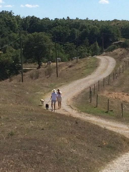 Lekker even wandelen met de honden over de onverharde weg