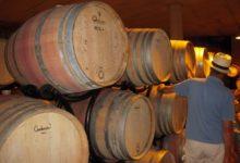 Wijnproeven-Wijnvaten