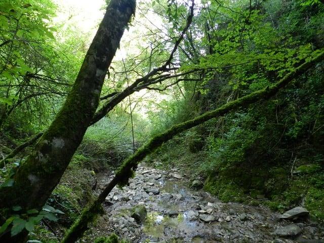 Wandelen over antieke verbindingswegen dichtbij Polmone
