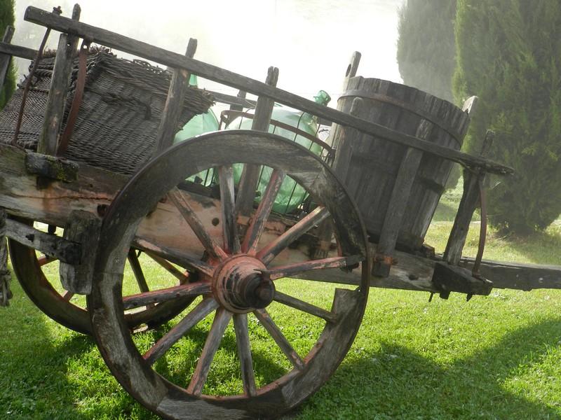 Boerenkar in de tuin van Polmone, agriturismo of appartementen in een vroegere boerderij