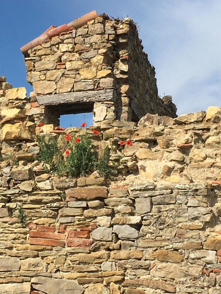 Ruines begroeid met kleurige bloemen