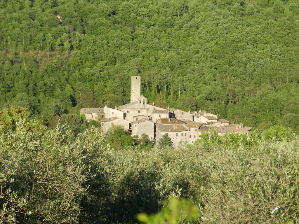 Ga Umbrië ontdekken met onze tips voor Rotecastello